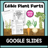 Edible Plant Parts: Google Slides