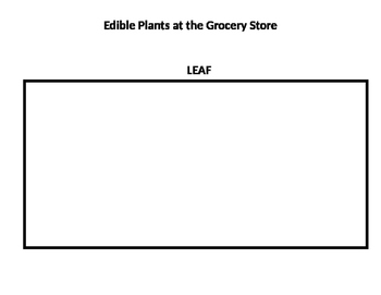 Edible Plants at the Grocery Store