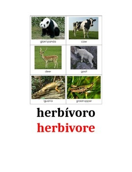 Editable Animal Vocabulary for Word Wall in Spanish and English