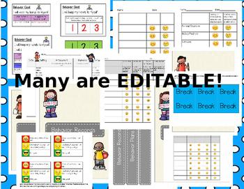 Editable Behavior Plans, Behavior Documenting, Binder Covers
