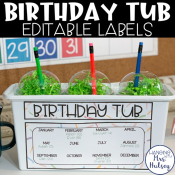 Editable Birthday Tub Labels