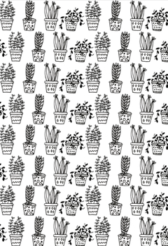 Editable Cactus Book Cover