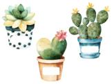 Editable Cactus & Succulent Nameplates