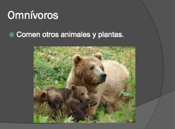 Editable Carnivore, Omnivore, Herbivore PowerPoint in Spanish