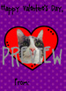 Editable Cat Valentine's