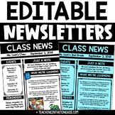 Weekly Newsletter Template Editable | PDF & PowerPoint Newsletter Templates