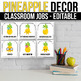 Editable Classroom Jobs with Pictures, Pineapple Classroom Decor