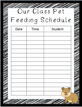 Editable Classroom Pet Packet ~ Hamster with Scribble Black Border