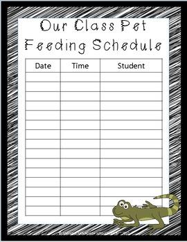 Editable Classroom Pet Packet ~ Lizard with Scribble Black Border
