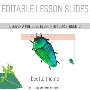Editable Daily Lesson Planning Slides Beetle Theme