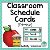 Editable Daily Schedule Cards (Aqua)