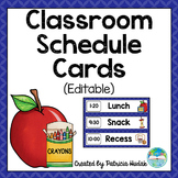 Editable Daily Schedule Cards (Blue)