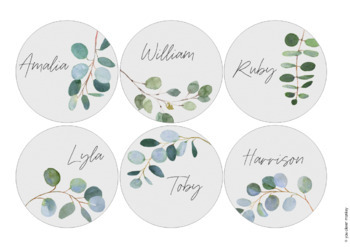 Editable Eucalyptus Classroom Labels and Signs