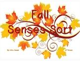 Fall Senses Sort