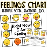 Editable Identifying Feelings and Emotions Chart for Socia