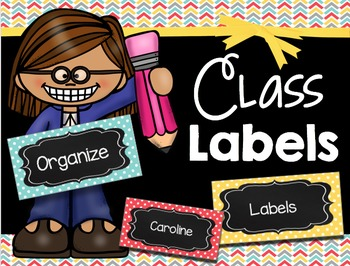 Editable Flash Cards - Labels - Word Walls - Sight Words -