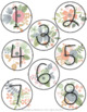 EDITABLE Floral Numbers and Labels
