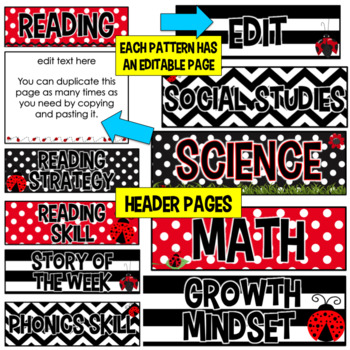 Editable Focus Wall- Ladybug Classroom Theme Decor