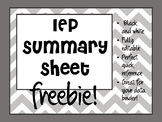 Editable IEP Summary Sheet