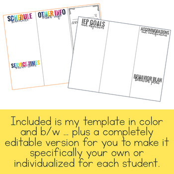 Editable IEP at a Glance Brochure - IEP Snapshot Brochure