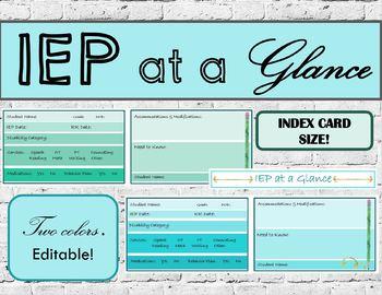 Editable Index card IEP at a Glance