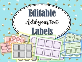 Editable Labels (168 Labels - Add Your Text) Great for Word Walls and More!