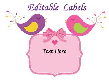 Bird Classroom Decor - Editable  Labels