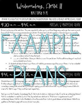 Editable Lesson Plan Sub Plan Template