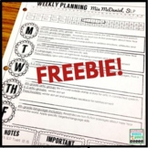 Editable Lesson Plan Template  {for SLPs and special educators}