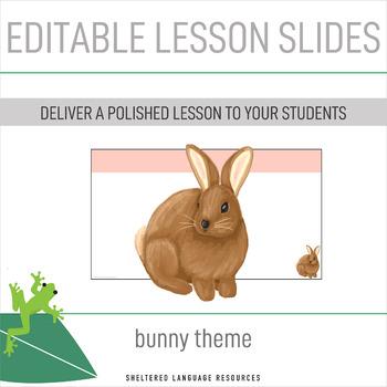 Editable Lesson Slides Bunny Rabbit Easter Theme