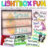 Editable Light Box Designs Set #1| Standard Size Lightbox | Classroom Decor