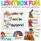 Editable Light Box Designs Set #4 | Standard Size Lightbox