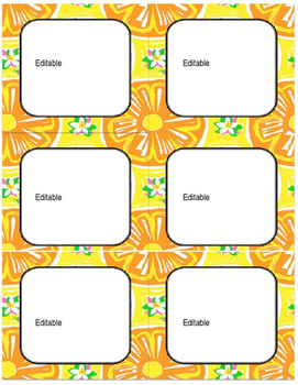 Editable Lilly Pulitzer Inspired Square Labels