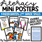 Editable Literacy Mini Posters - Phonics, Comprehension, Writing & More!
