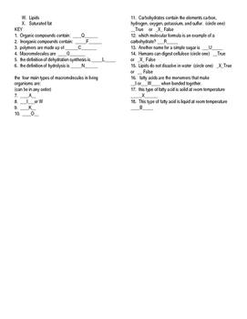 Editable Macromolecules quick quiz formative assessment bell work