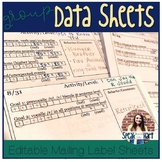 Editable Mailing Label Group Data Sheet and Individual Lesson Plan Template