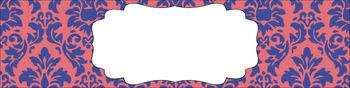 Editable Medium Sterilite Drawer Labels - Princess