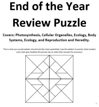 Editable Middle School Review Puzzle