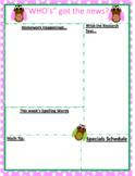 Editable Owl Themed Newsletter