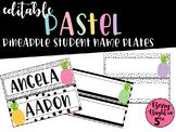 Editable Pastel Pineapple Student Name Plates