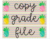 Editable Pineapple 3-drawer labels