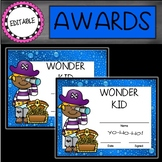 Editable Pirate End of the Year Awards