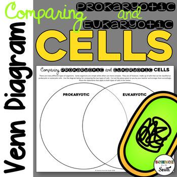 Prokaryotic And Eukaryotic Cells Venn Diagram Teaching Resources