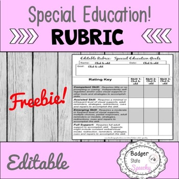 Editable Rubric (for special ed and speech & language)