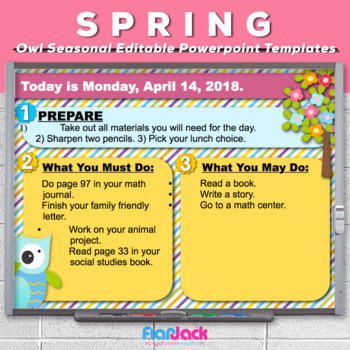 Editable SPRING Owl Themed Morning Work PowerPoint Templates