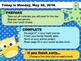 Editable SUMMER Owl Morning Work GOOGLE SLIDES Templates