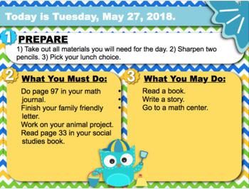 Editable SUMMER Owl Themed Morning Work PowerPoint Templates
