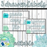 Editable Sterilite 3 Drawer Labels - Blue and Green Watercolor Succulents