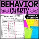 Editable Student Individual Behavior Chart