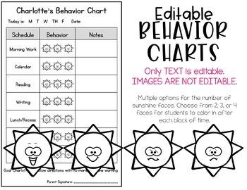 Editable Student Individual Behavior Chart - June & July
